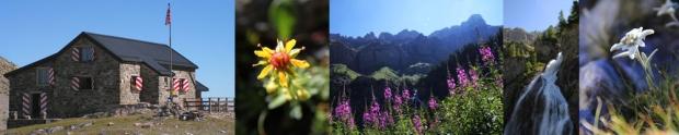 Week-end botanique