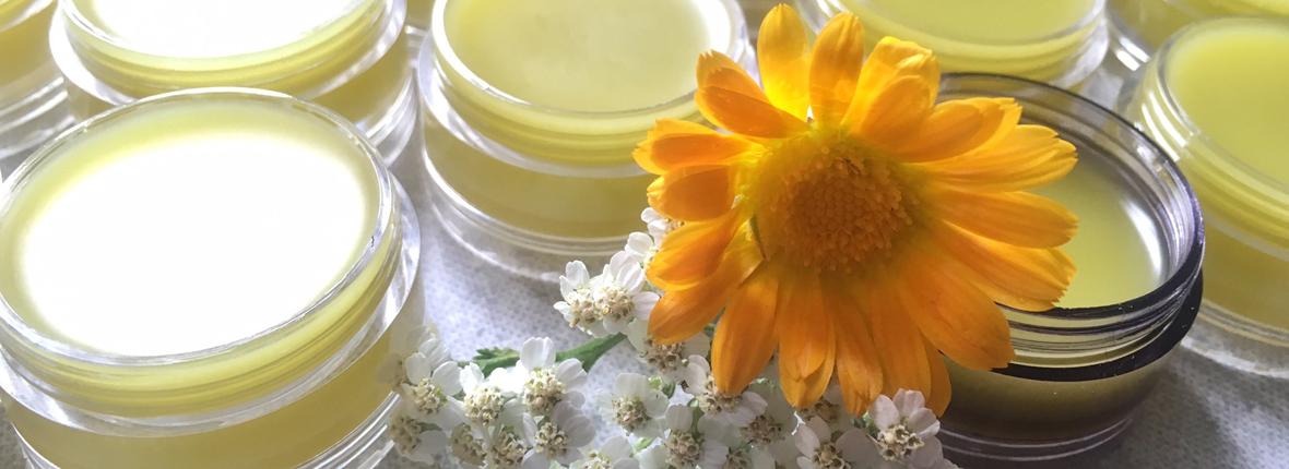 Produits alimentaires et cosmétiques à base de plantes